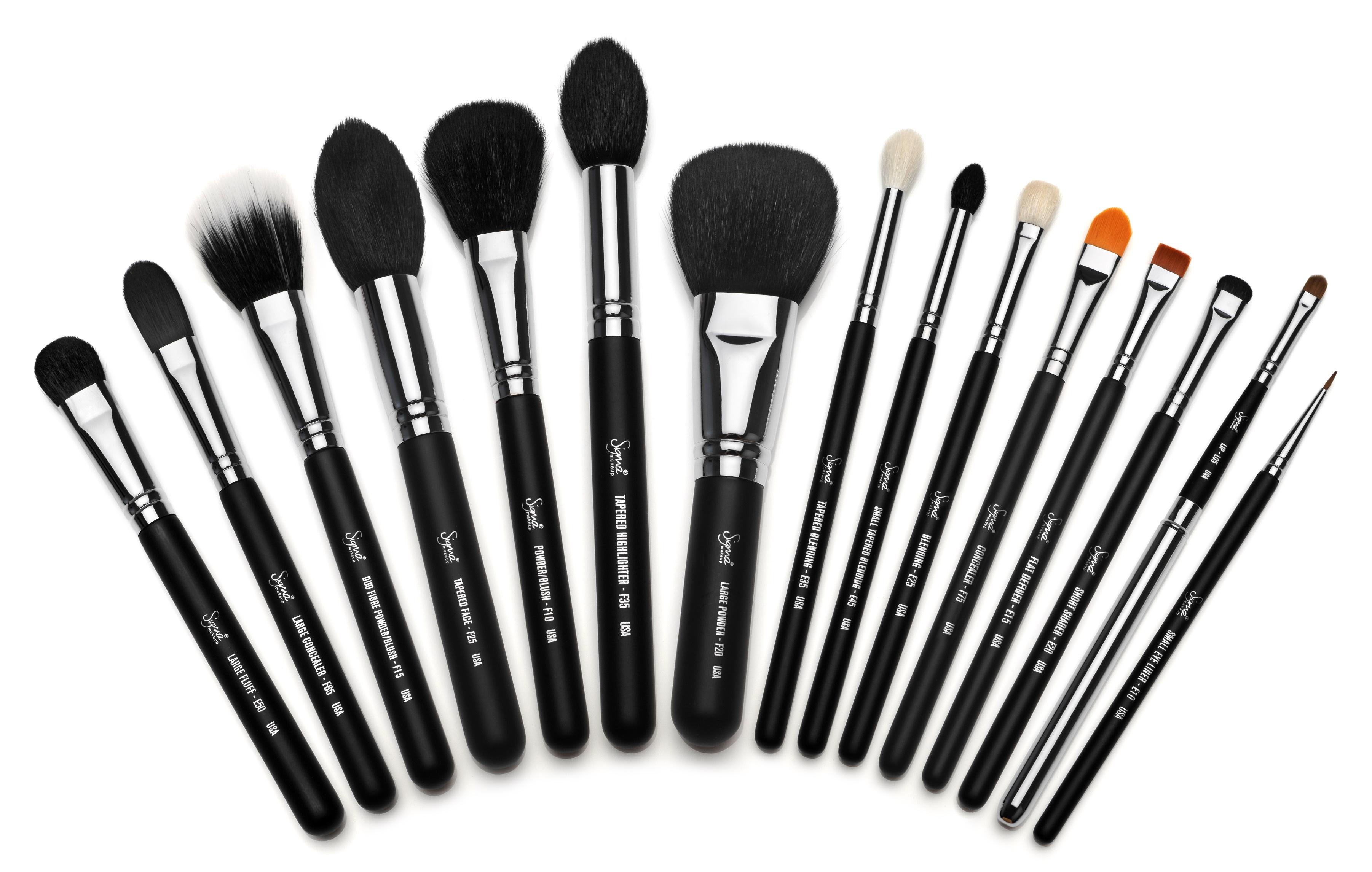 Make Up: makeup brush set